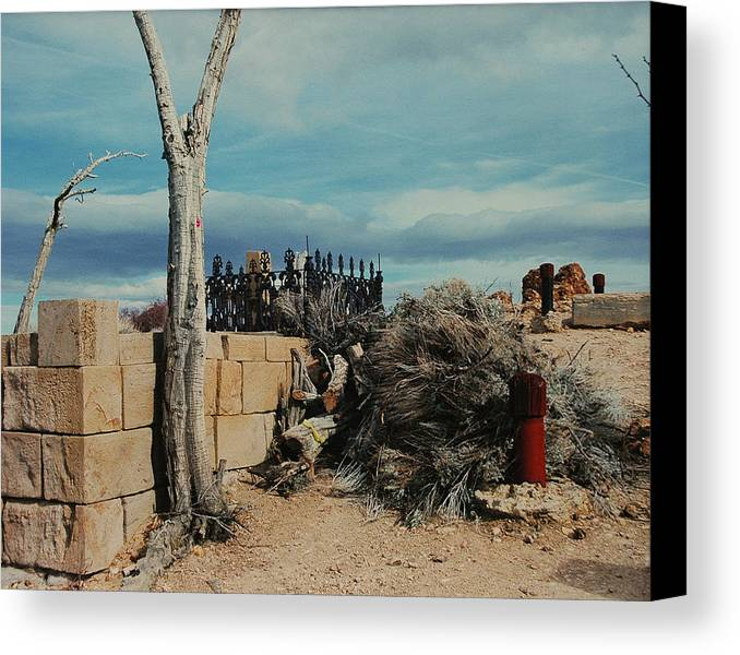 Dessert Canvas Print featuring the photograph Dust To Dust by Lori Mellen-Pagliaro