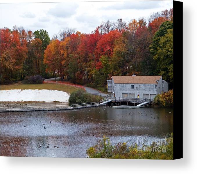 Nature Canvas Print featuring the photograph Fall At Schooley's Mountain by Robert Pilkington