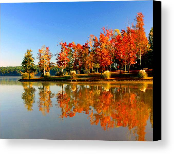 Lake Canvas Print featuring the photograph Fall On Lake by Ralph Perdomo
