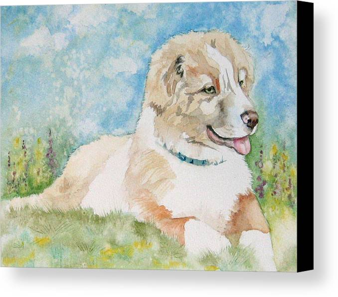 Canine Canvas Print featuring the painting Hank by Gina Hall