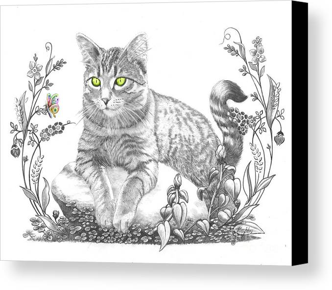 Cat Canvas Print featuring the drawing House Cat by Murphy Elliott