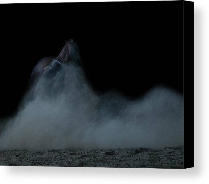 Dust Canvas Print featuring the photograph In The Shadows Iv by Eleszabeth McNeel