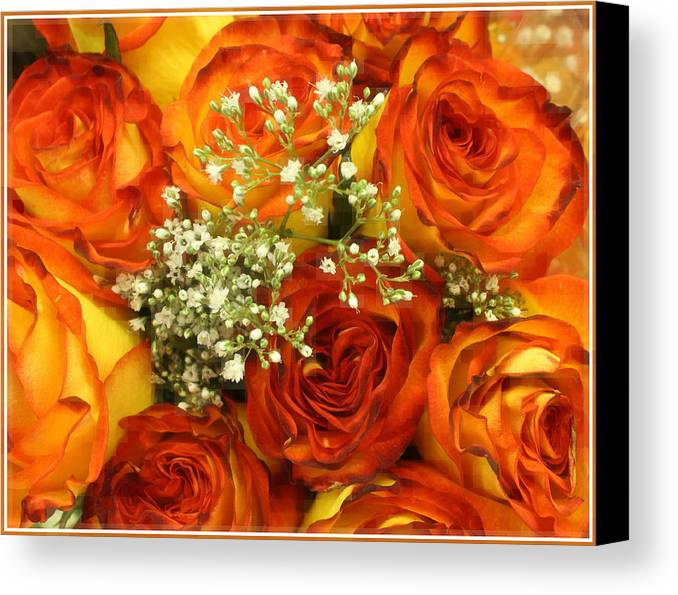 Roses Canvas Print featuring the photograph Late Summer Roses by Dora Sofia Caputo Photographic Design and Fine Art