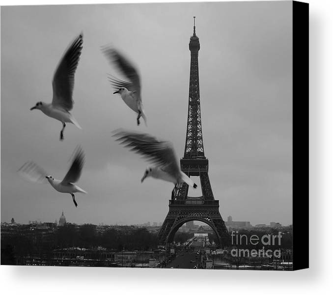 Danica Radman Canvas Print featuring the photograph Let Your Spirit Fly by Danica Radman