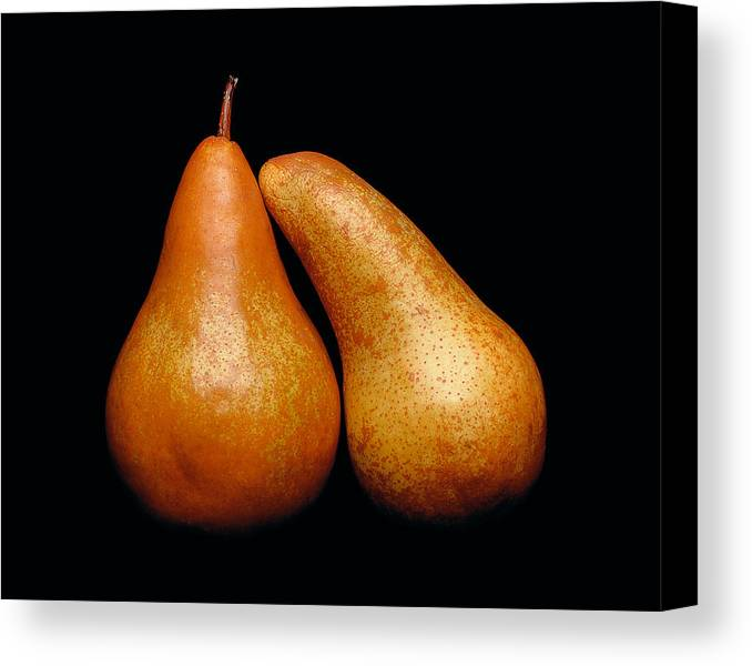 Pear Canvas Print featuring the photograph Loving Pair by Gary Cloud