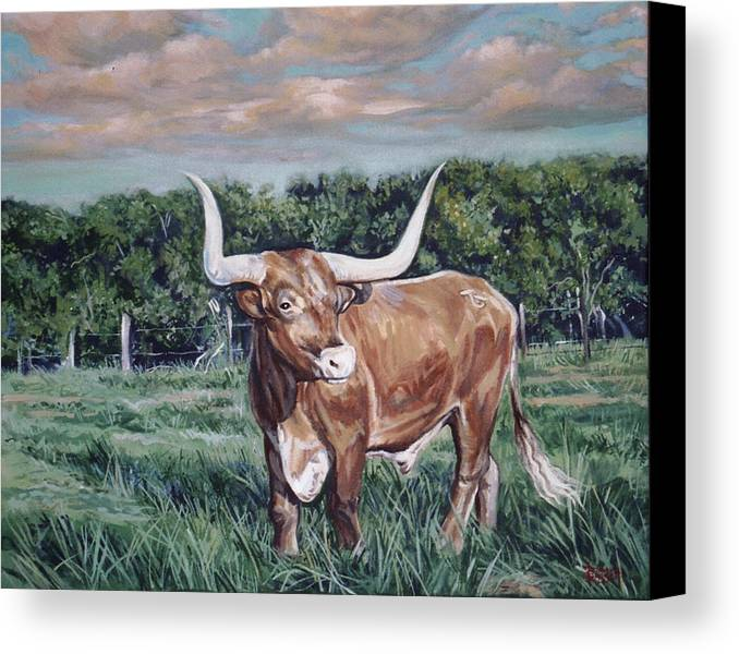 Bull Canvas Print featuring the painting Mays Longhorn by Diann Baggett