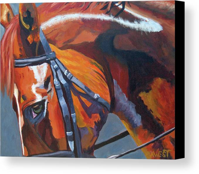 Horse Canvas Print featuring the painting Mr. Big Stuff by Anne West