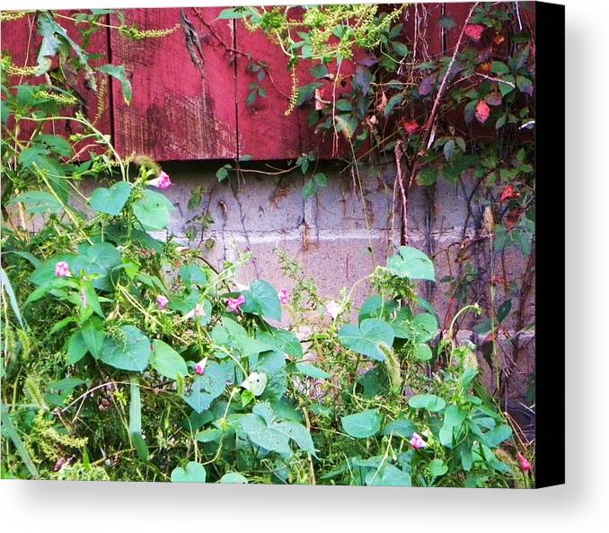 Flowers Canvas Print featuring the photograph Old Red Barn II by Cindy Gacha