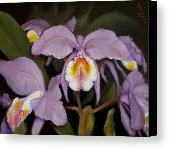 Realism Canvas Print featuring the painting Orchids by Donelli DiMaria