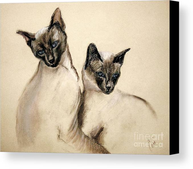 Cat Canvas Print featuring the drawing Sibling Love by Cori Solomon