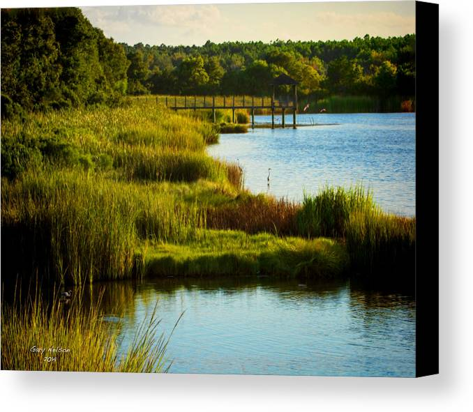 Beach Canvas Print featuring the photograph South From The Causeway Huntington Beach State Park Sc by Gary Nelson