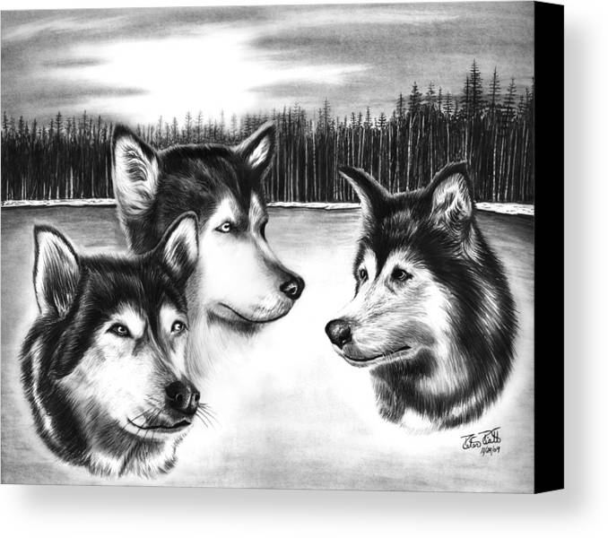 Spirit Guides Canvas Print featuring the drawing Spirit Guides by Peter Piatt