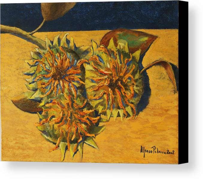 Still-life Painting Canvas Print featuring the painting Sunflowers by Alfonso Palma