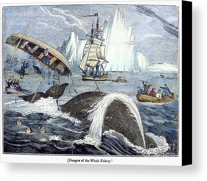 1833 Canvas Print featuring the photograph Whaling, 1833 by Granger