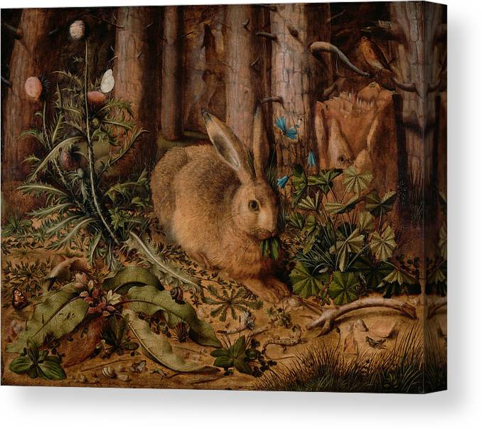 Hans Hoffmann Canvas Print featuring the painting A Hare In The Forest by Hans Hoffmann