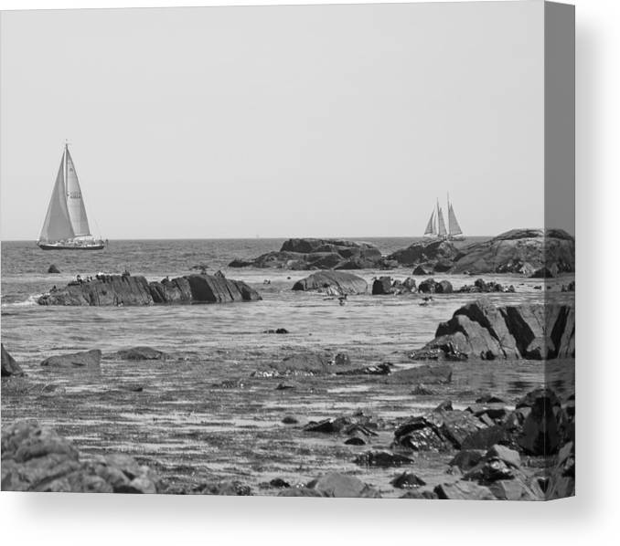 Kennebunkport Canvas Print featuring the photograph Sailing by Betsy Knapp
