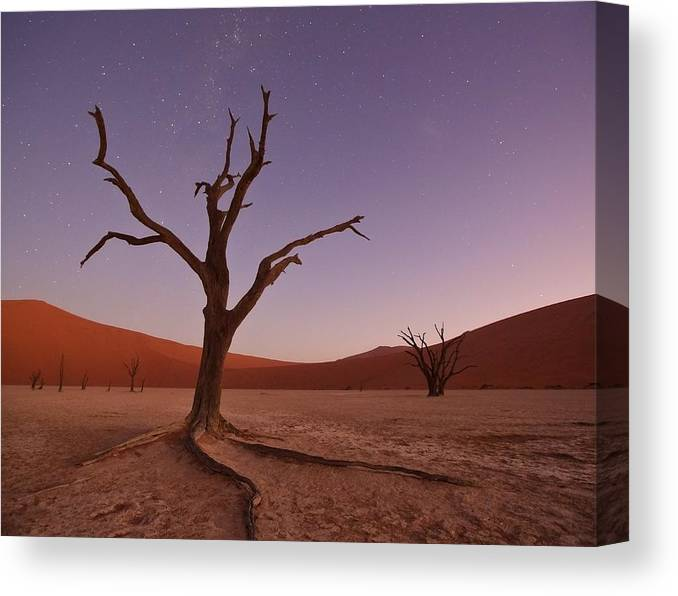 Naukluft Canvas Print featuring the photograph African Lullaby by Mc