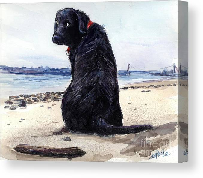 Black Labrador Canvas Print featuring the painting Fetching by Molly Poole