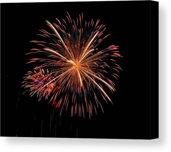 Fireworks Canvas Print featuring the photograph Flower And Bud by Devinder Sangha