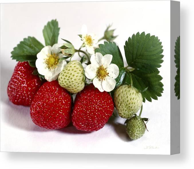 Strawberries Canvas Print featuring the photograph Gardenfresh Strawberries by Iris Richardson