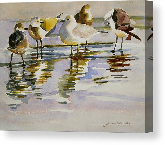 Watercolors Of Birds Canvas Print featuring the painting Gull Family by Julianne Felton