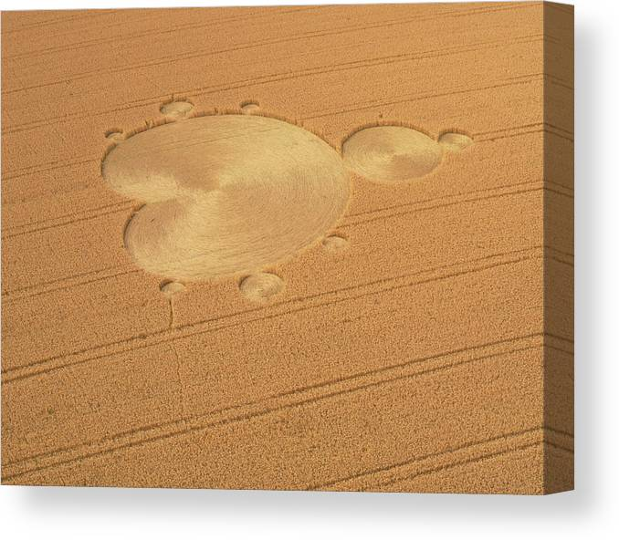 Crop Circle Canvas Print featuring the photograph Mandelbrot Set Crop Circle by David Parker/science Photo Library