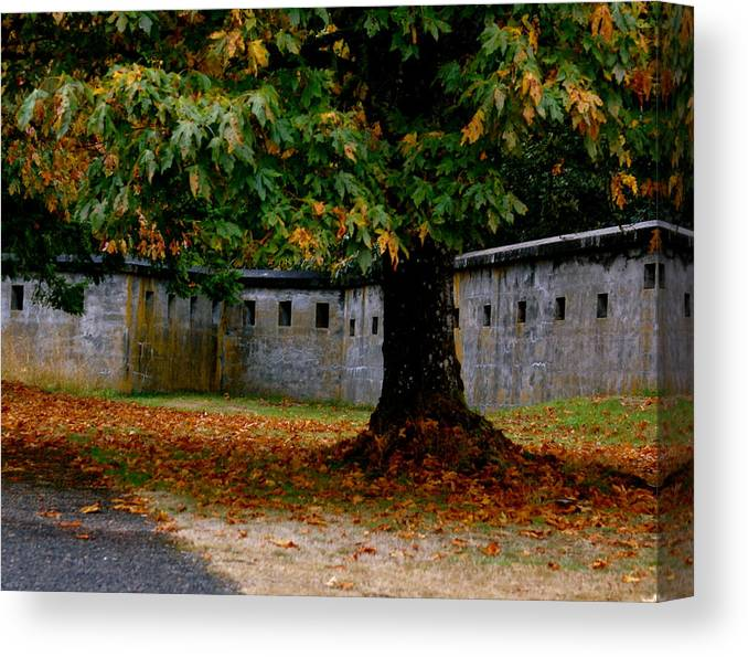 Nature Canvas Print featuring the photograph Fort Rodd Hill by Sonja Anderson