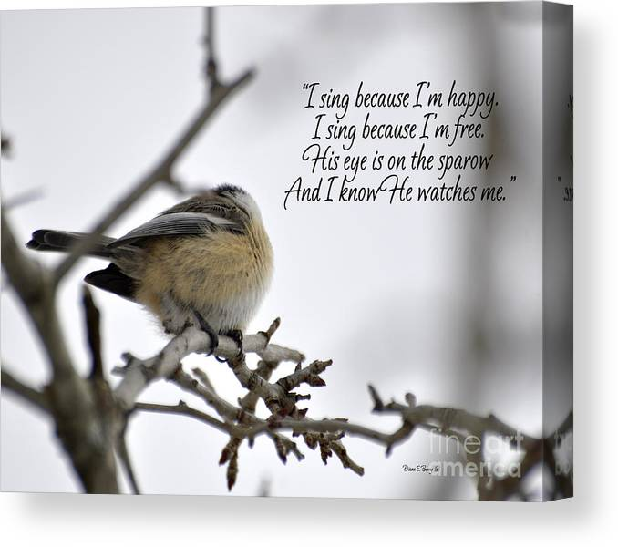 Diane Berry Canvas Print featuring the photograph His Eye Is On The Sparrow by Diane E Berry