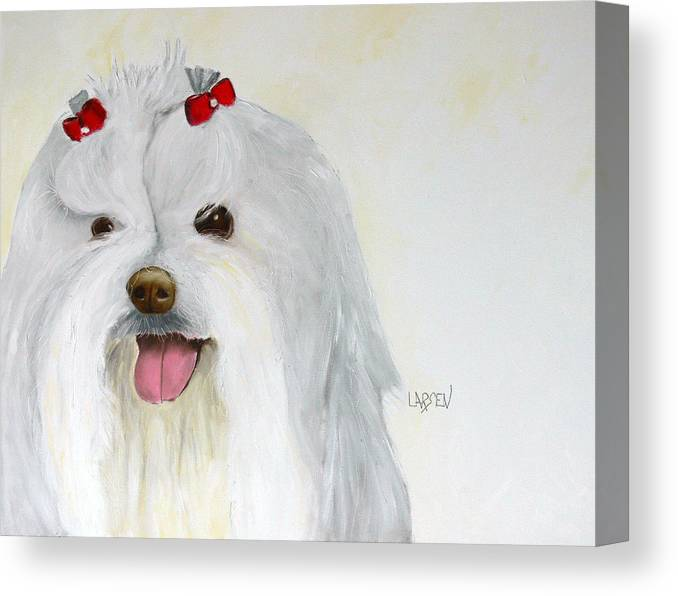 Canvas Print featuring the painting Maltese by Dick Larsen