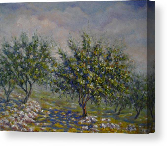 Landscape Canvas Print featuring the painting Olive Tree Field by Mirjana Gotovac