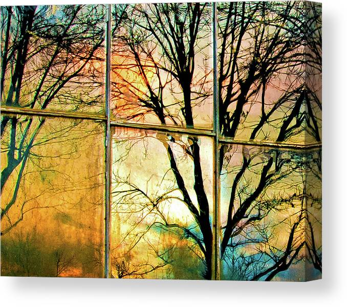 Window Canvas Print featuring the photograph Reflections by Ron McGinnis