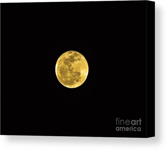 Moon Canvas Print featuring the photograph Passover Full Moon by Al Powell Photography USA
