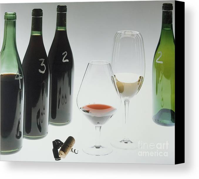 Wine Canvas Print featuring the photograph Blind Taste Test by Jerry McElroy