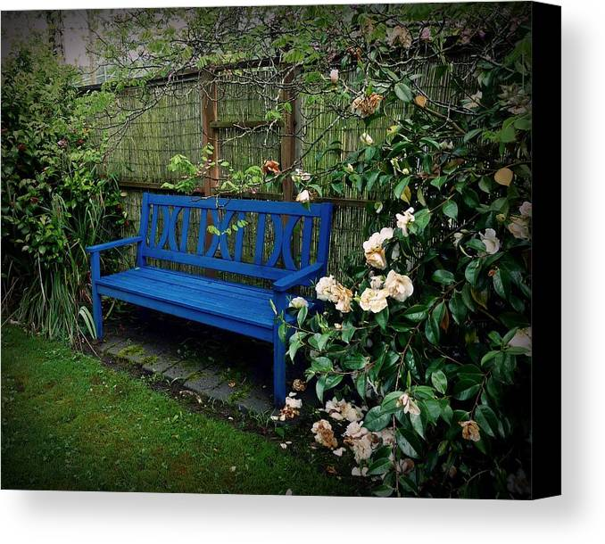 Bench Canvas Print featuring the photograph Blue Bench With Roses by Patricia Strand