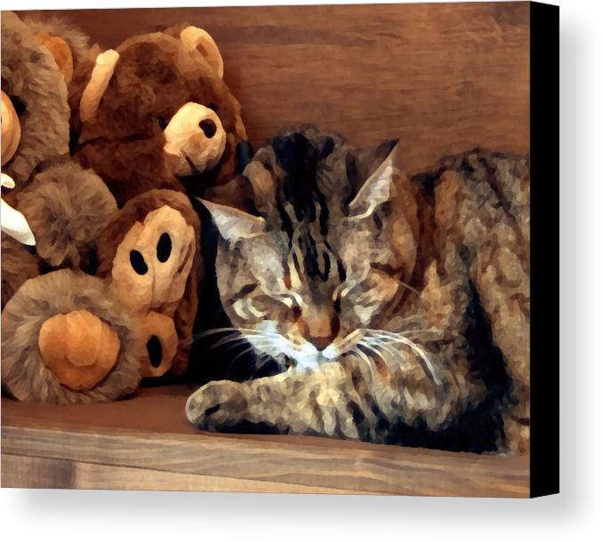 Tabby Canvas Print featuring the photograph Brownie by Jeanne A Martin