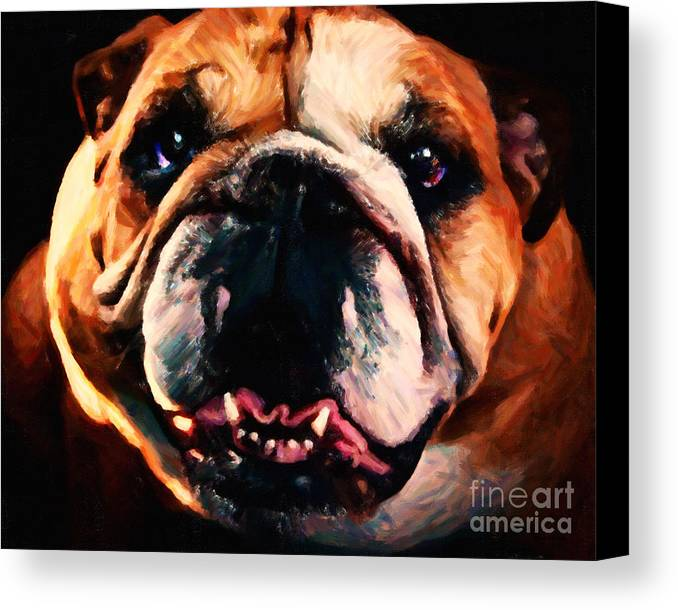 Animal Canvas Print featuring the photograph English Bulldog - Painterly by Wingsdomain Art and Photography