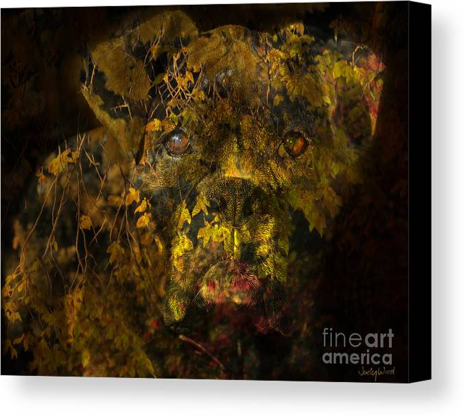 Boxer Dog Canvas Print featuring the digital art Fall Boxer by Judy Wood