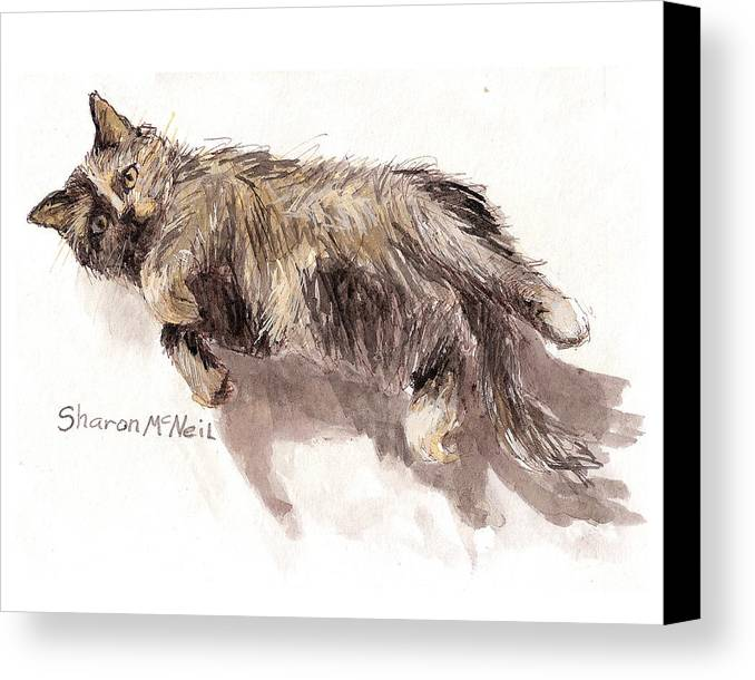 Cat Canvas Print featuring the drawing Frisky Moment by Sharon McNeil