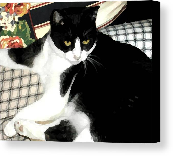 Black And White Canvas Print featuring the photograph Kitty On His Perch by Jeanne A Martin