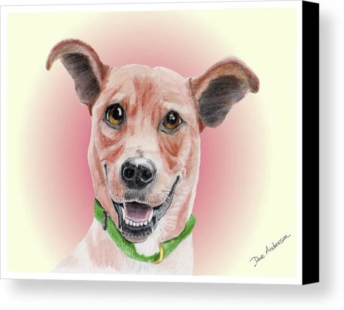 Dog Canvas Print featuring the mixed media Maggie Former Shelter Sweetie by Dave Anderson