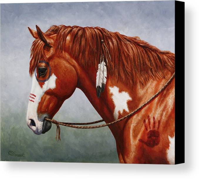 Horse Canvas Print featuring the painting Native American War Horse by Crista Forest