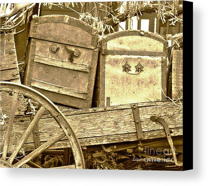 Genoa Canvas Print featuring the photograph Old Trunks In Genoa Nevada by Artist and Photographer Laura Wrede