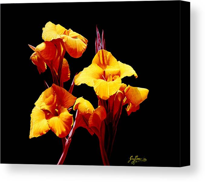 Yellow Cannas Canvas Print featuring the painting Orange Cannas by Gary Hernandez
