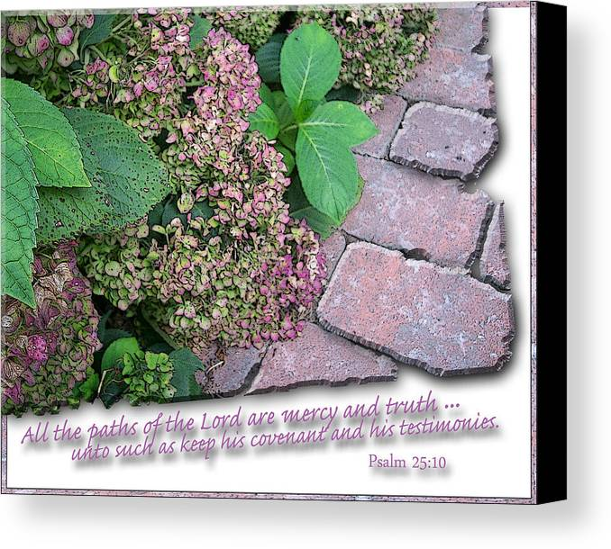 Christian Canvas Print featuring the photograph Paths Of The Lord by Larry Bishop