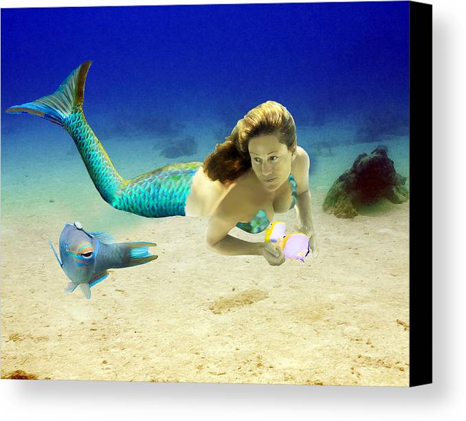 Mermaid Canvas Print featuring the photograph Playmates by Paula Porterfield-Izzo
