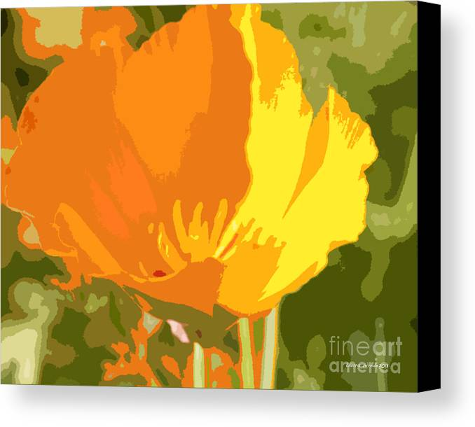 Bstract California Poppies Photographs Canvas Print featuring the photograph Retro Abstract Poppies 2 by Artist and Photographer Laura Wrede