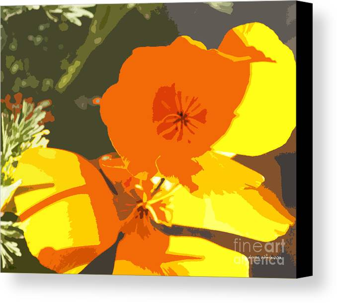 Abstract California Poppies Canvas Print featuring the photograph Retro Abstract Poppies by Artist and Photographer Laura Wrede