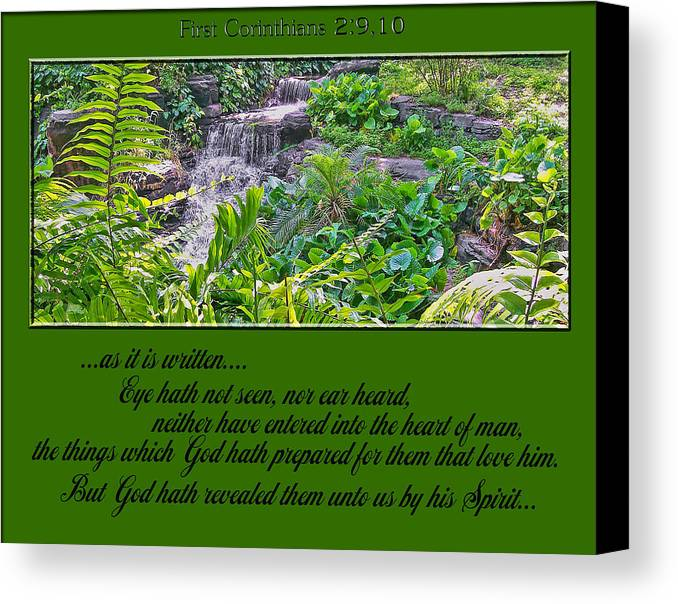 Bible Canvas Print featuring the photograph Supply by Larry Bishop