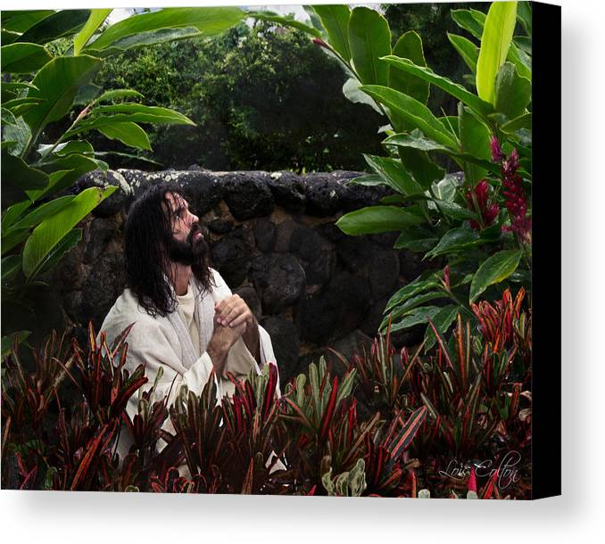 Jesus Canvas Print featuring the photograph Thy Will Be Done by Lois Colton