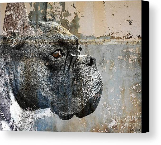 Dog Canvas Print featuring the digital art Watchful by Judy Wood